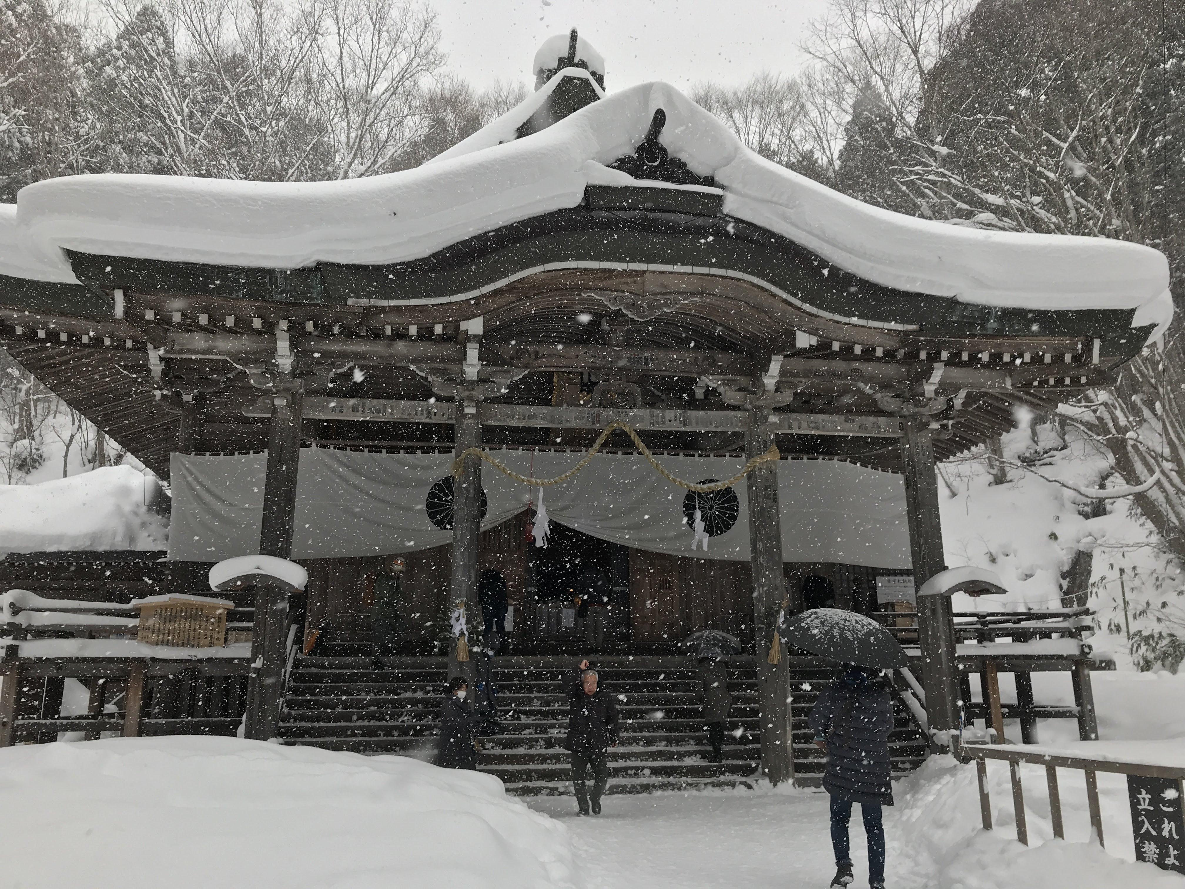 戸隠神社おみくじ