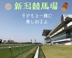 【新潟競馬場】入場料100円だけで、親子で1日楽しめる場所でした。馬券を買わなくても楽しめるよ