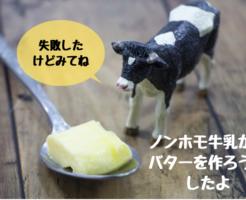 【失敗だよ】ノンホモ牛乳でバターができるんだって?